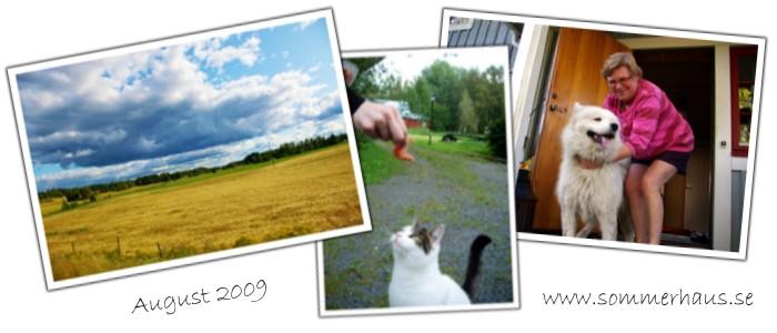 Links: Weite Felder und Wälder rings um unser Ferienhaus in Schweden; Rechts: 300 Meter weiter bei den Vermietern der Ferienhäuser
